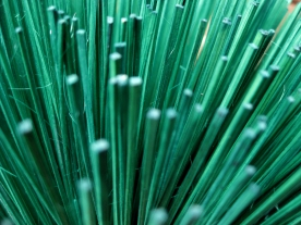 Green Incense Stick