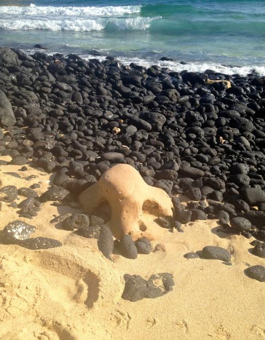 Beach Nose